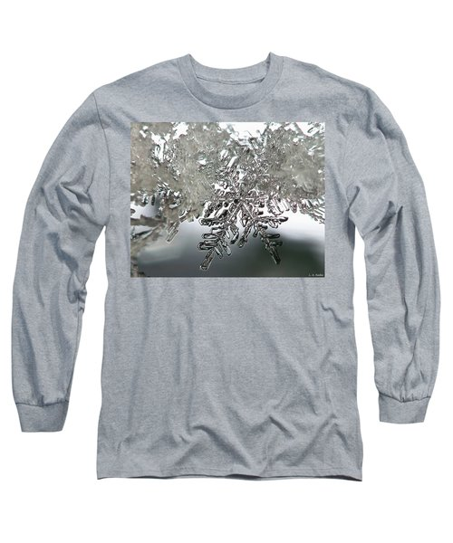 Winter's Glory Long Sleeve T-Shirt