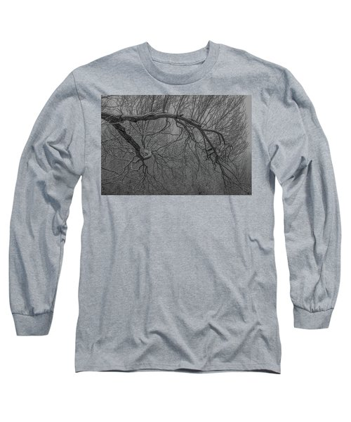 Wintery Tree Long Sleeve T-Shirt