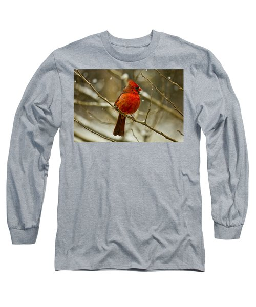 Wintry Cardinal Long Sleeve T-Shirt