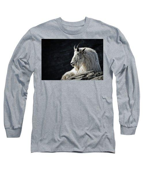 Wisdom From Up High Long Sleeve T-Shirt by Brad Allen Fine Art