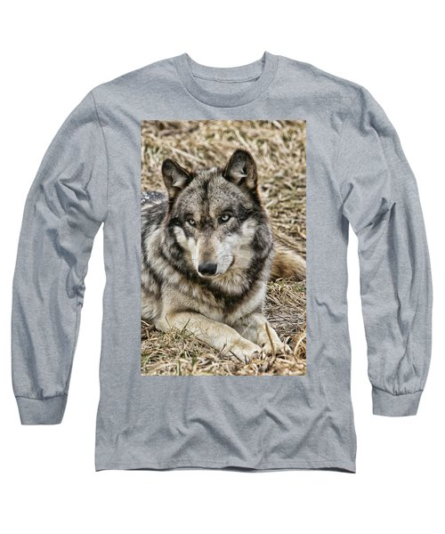 Wolf Portrait Long Sleeve T-Shirt by Shari Jardina