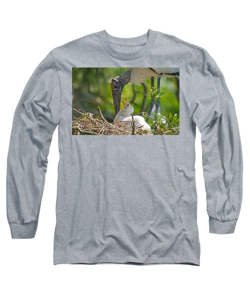 Wood Stork Chick And Mom Long Sleeve T-Shirt by Kenneth Albin