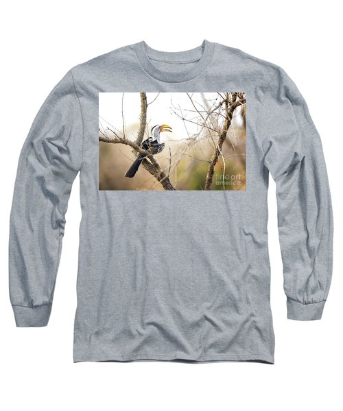 Yellow-billed Hornbill Sitting In A Tree.  Long Sleeve T-Shirt by Jane Rix