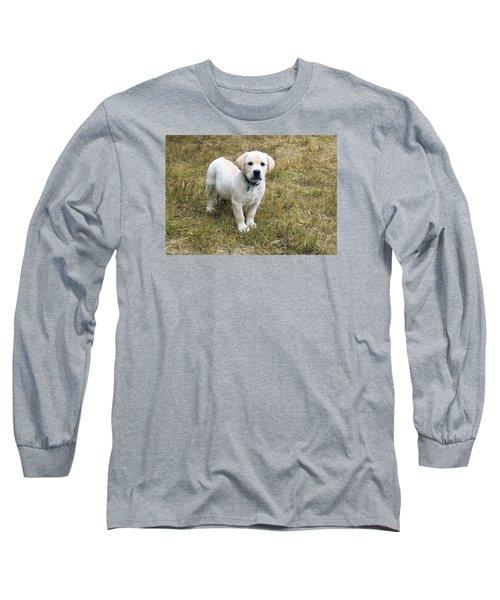Yellow Labrador Puppy At Wanting To Play. Long Sleeve T-Shirt