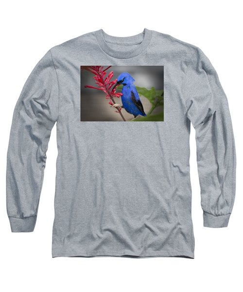 Yellow Legged Honey Creeper Long Sleeve T-Shirt