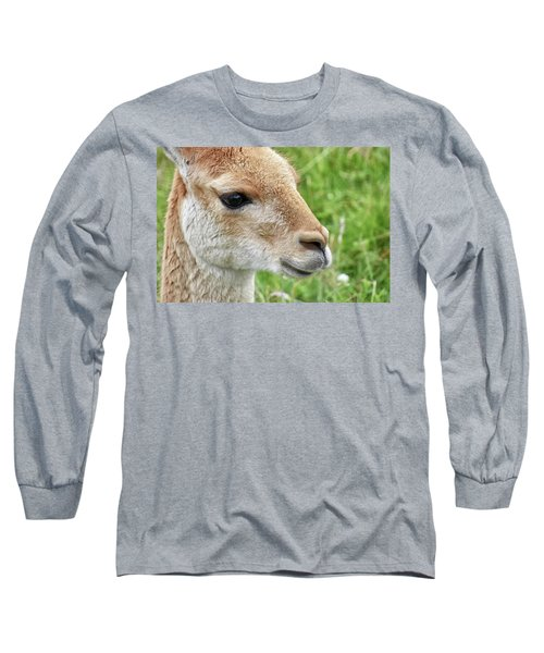 You Can Call Me Al Long Sleeve T-Shirt