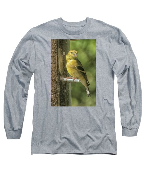 Long Sleeve T-Shirt featuring the photograph Young Goldfinch by Constantine Gregory