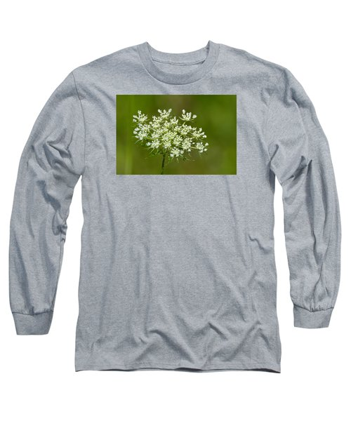 Long Sleeve T-Shirt featuring the photograph Young Queen Anne's Lace  by Lyle Crump