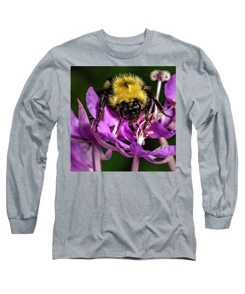Long Sleeve T-Shirt featuring the photograph Yummy Pollen by Darcy Michaelchuk