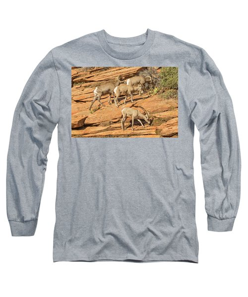 Long Sleeve T-Shirt featuring the photograph Zion Big Horn Sheep by Peter J Sucy