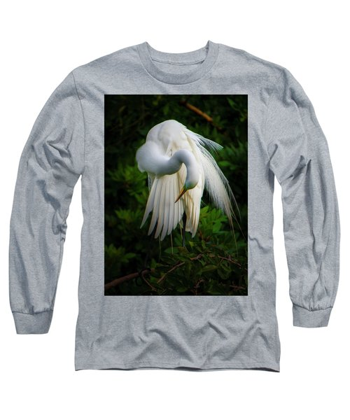 Breeding Plumage And Color Long Sleeve T-Shirt