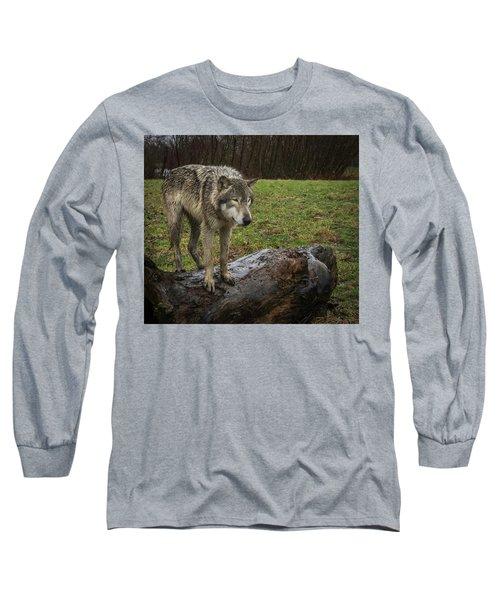 Hangin On The Log Long Sleeve T-Shirt