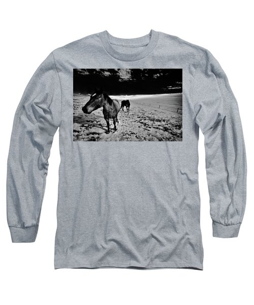 Long Sleeve T-Shirt featuring the photograph Horses On The Palouse by David Patterson