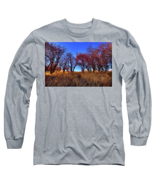 Long Sleeve T-Shirt featuring the photograph Autumn Light by David Patterson