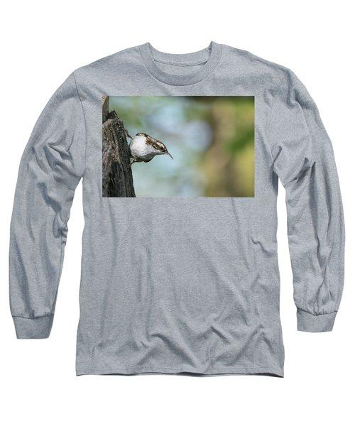 Treecreeper Long Sleeve T-Shirt
