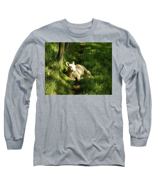 20/06/14  Keswick. Lamb In The Woods. Long Sleeve T-Shirt