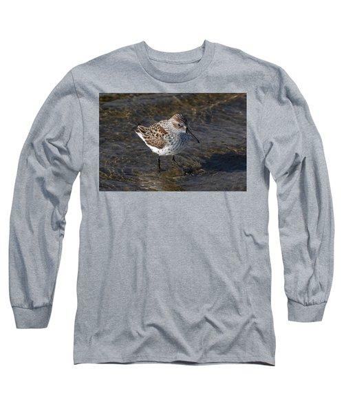 A Dunlin Long Sleeve T-Shirt