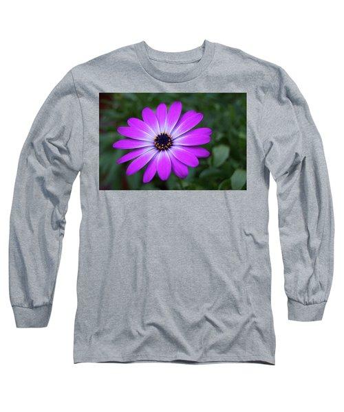 African Daisy Long Sleeve T-Shirt
