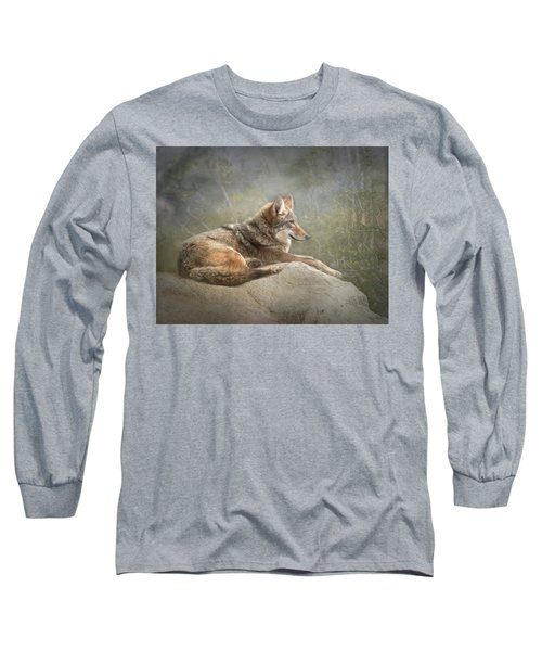 Afternoon Repose Long Sleeve T-Shirt