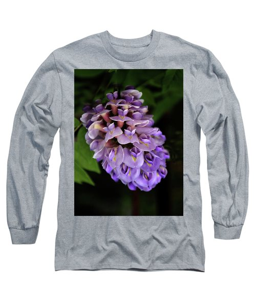 Amethyst Falls Long Sleeve T-Shirt
