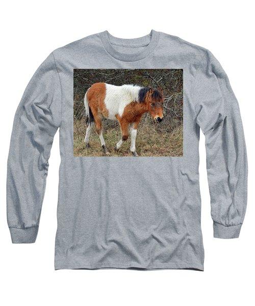 Autumn Glory N2bhs-ap On Assateague Island Long Sleeve T-Shirt