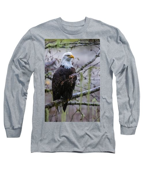 Bald Eagle In Rain Forest Long Sleeve T-Shirt