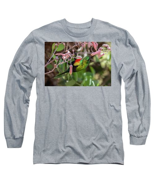 Beautiful Sunbird Long Sleeve T-Shirt