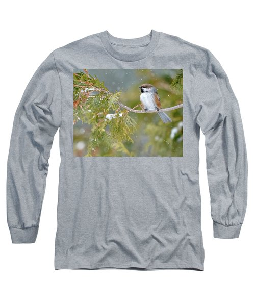 Boreal Chickadee In Winter Long Sleeve T-Shirt