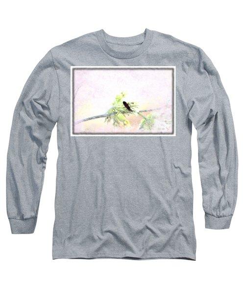 Boxelder Bug In Morning Haze Long Sleeve T-Shirt