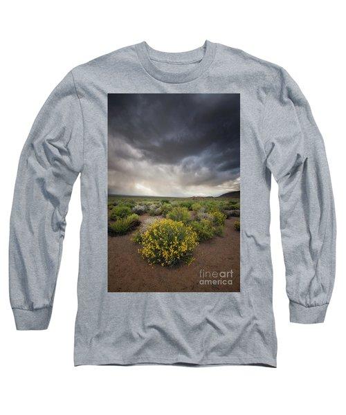 Bright Bush Under Dark Skies Long Sleeve T-Shirt