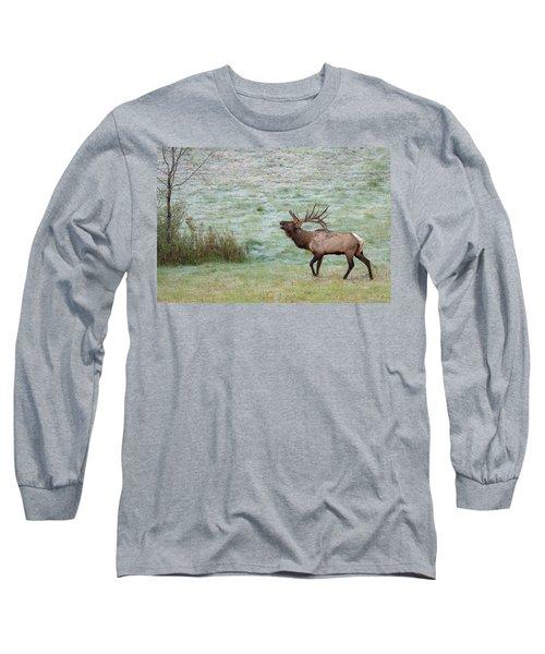 Bugling Bull Long Sleeve T-Shirt