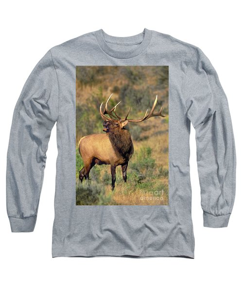 Bull Elk In Rut Bugling Yellowstone Wyoming Wildlife Long Sleeve T-Shirt