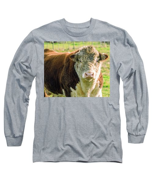 Bull In The Country Side Of Tasmania. Long Sleeve T-Shirt