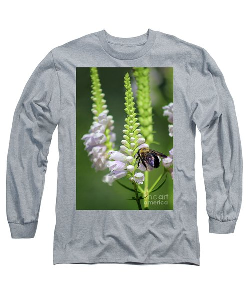 Bumblebee On Obedient Flower Long Sleeve T-Shirt