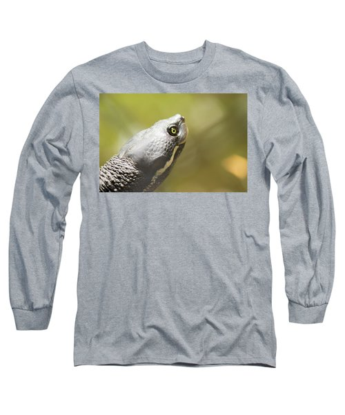 Close Up Of A Turtle. Long Sleeve T-Shirt