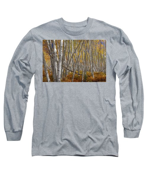 Long Sleeve T-Shirt featuring the photograph Colorful Stick Forest by James BO Insogna