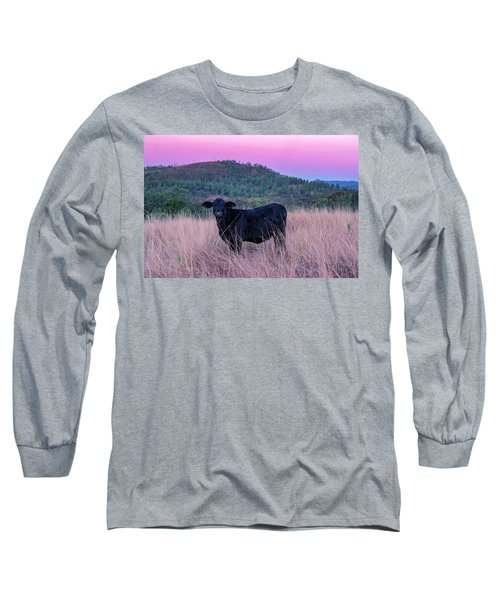 Cow Outside In The Paddock Long Sleeve T-Shirt