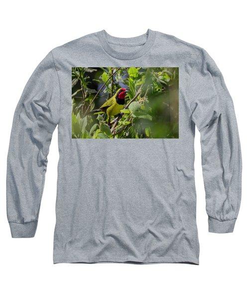 Doherty's Bushshrike Long Sleeve T-Shirt