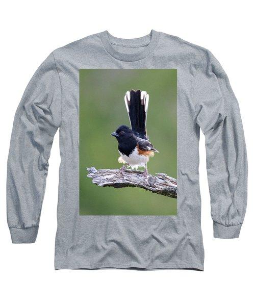 Eastern Towhee 50413 Long Sleeve T-Shirt