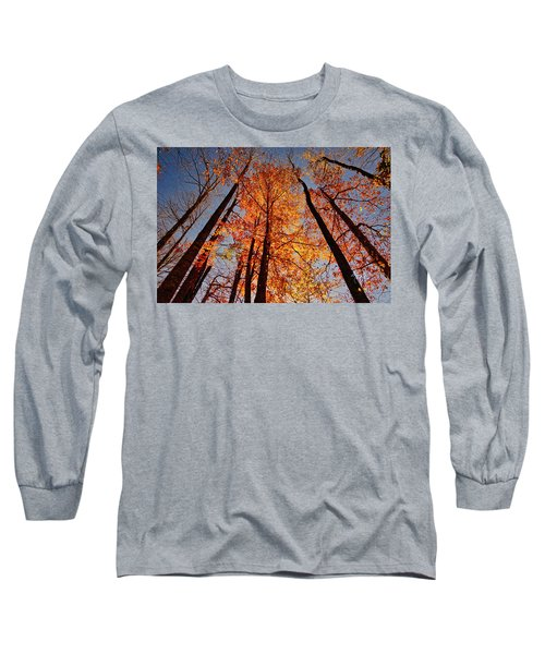 Fall Trees Sky Long Sleeve T-Shirt