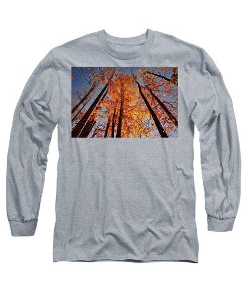 Fall Trees Sky Long Sleeve T-Shirt