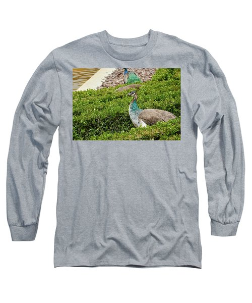Female Peafowl At The Gardens Of Cecilio Rodriguez In Madrid, Spain Long Sleeve T-Shirt