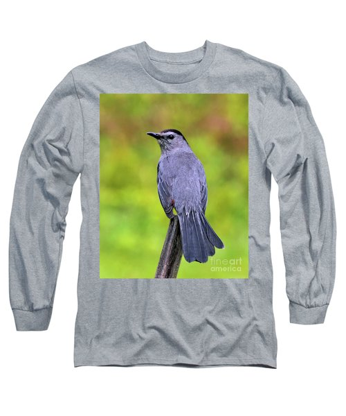 Grey Catbird Long Sleeve T-Shirt