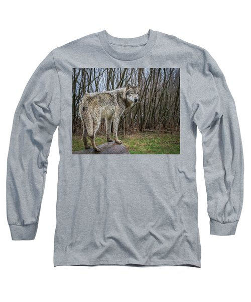 Hangin' Out Long Sleeve T-Shirt