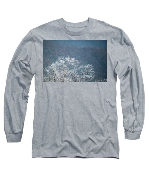 Hoarfrost Collects On Branches Long Sleeve T-Shirt