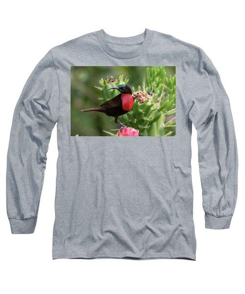 Hunter's Sunbird Long Sleeve T-Shirt