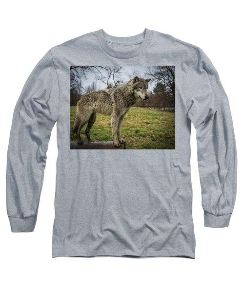 I See It Long Sleeve T-Shirt