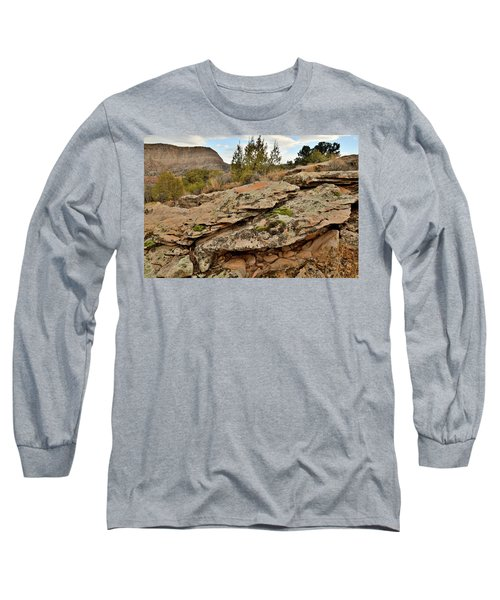 Lichen Covered Ledge In Colorado National Monument Long Sleeve T-Shirt