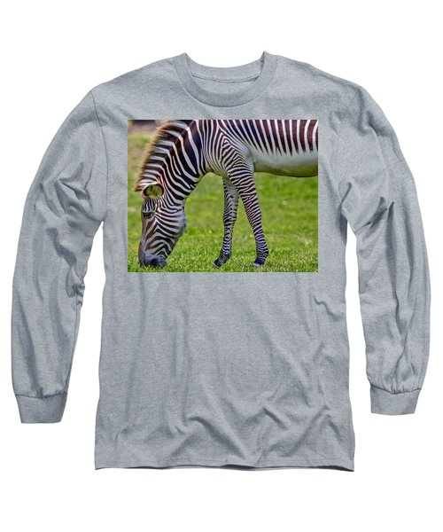 Love Zebras Long Sleeve T-Shirt