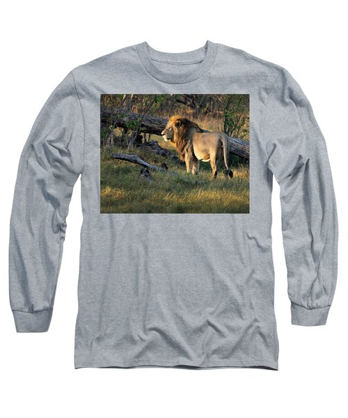Male Lion In Botswana Long Sleeve T-Shirt